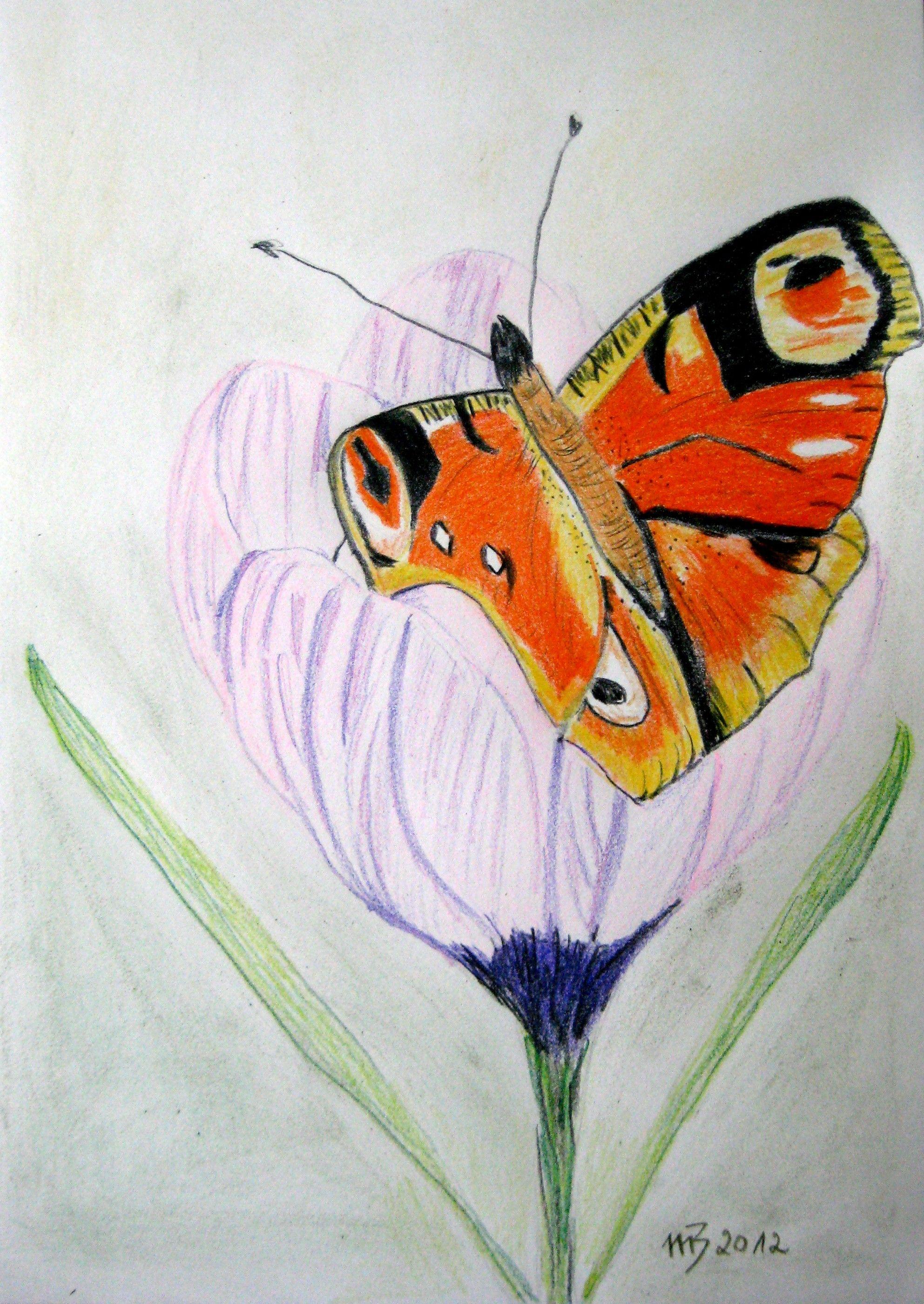 Frühlingsgruß, Buntstift, 30 x 21 cm