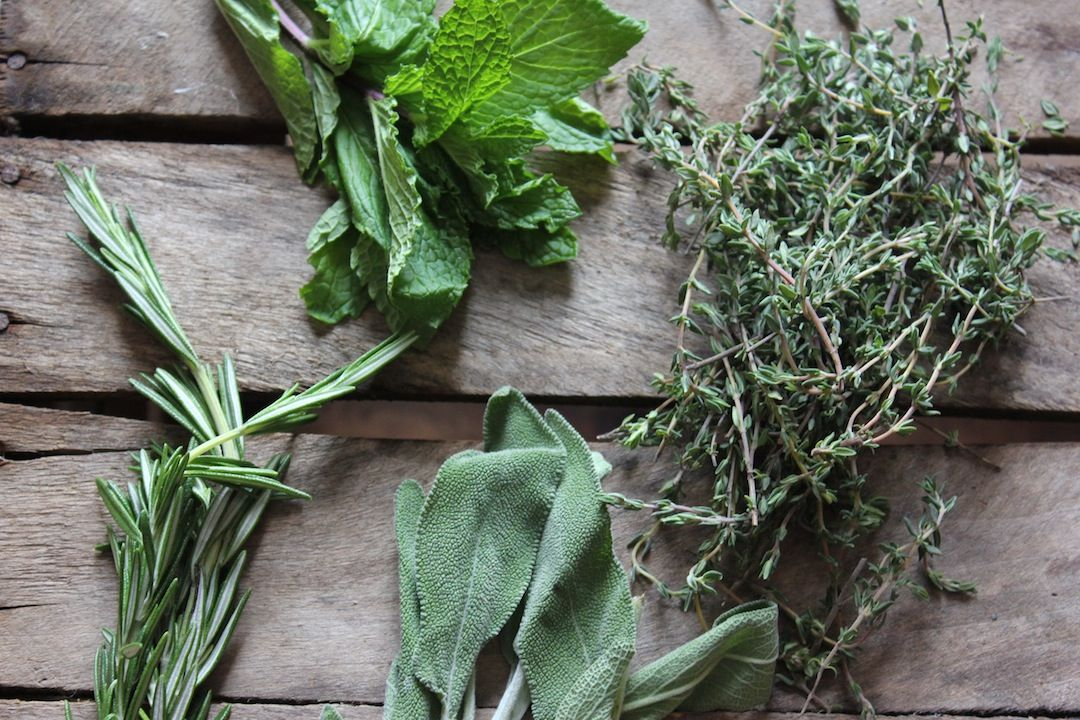 Teaching Taste: Adding Herbs, Spice and Flavor to Baby Food