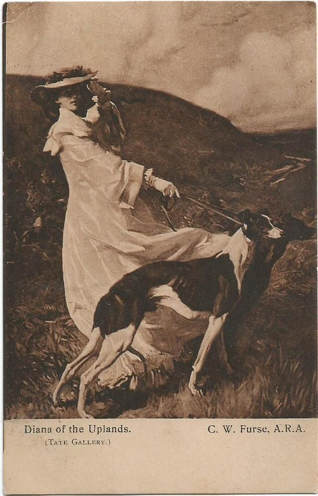 Dogs, Elegant Lady Walking with a Greyhound, Old Postcard