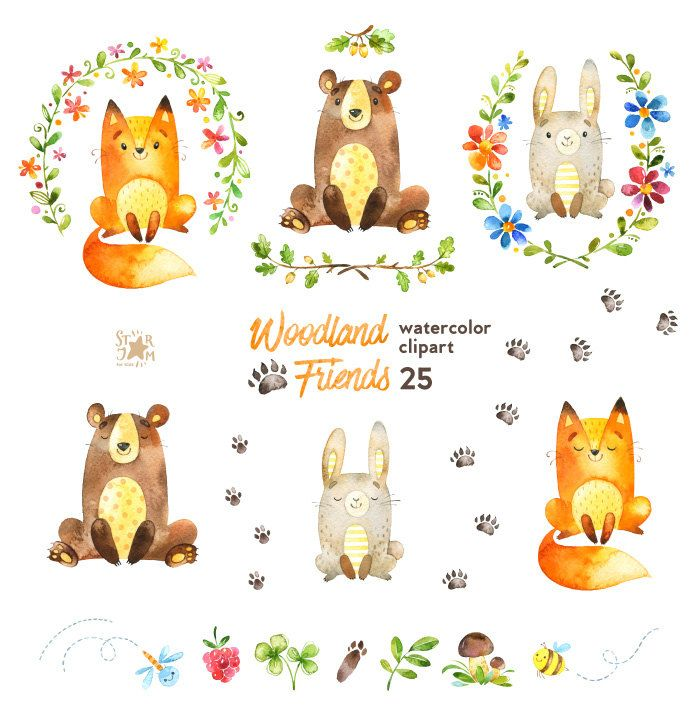 Woodland Friends Watercolor Animals Clipart Forest Bear Fox