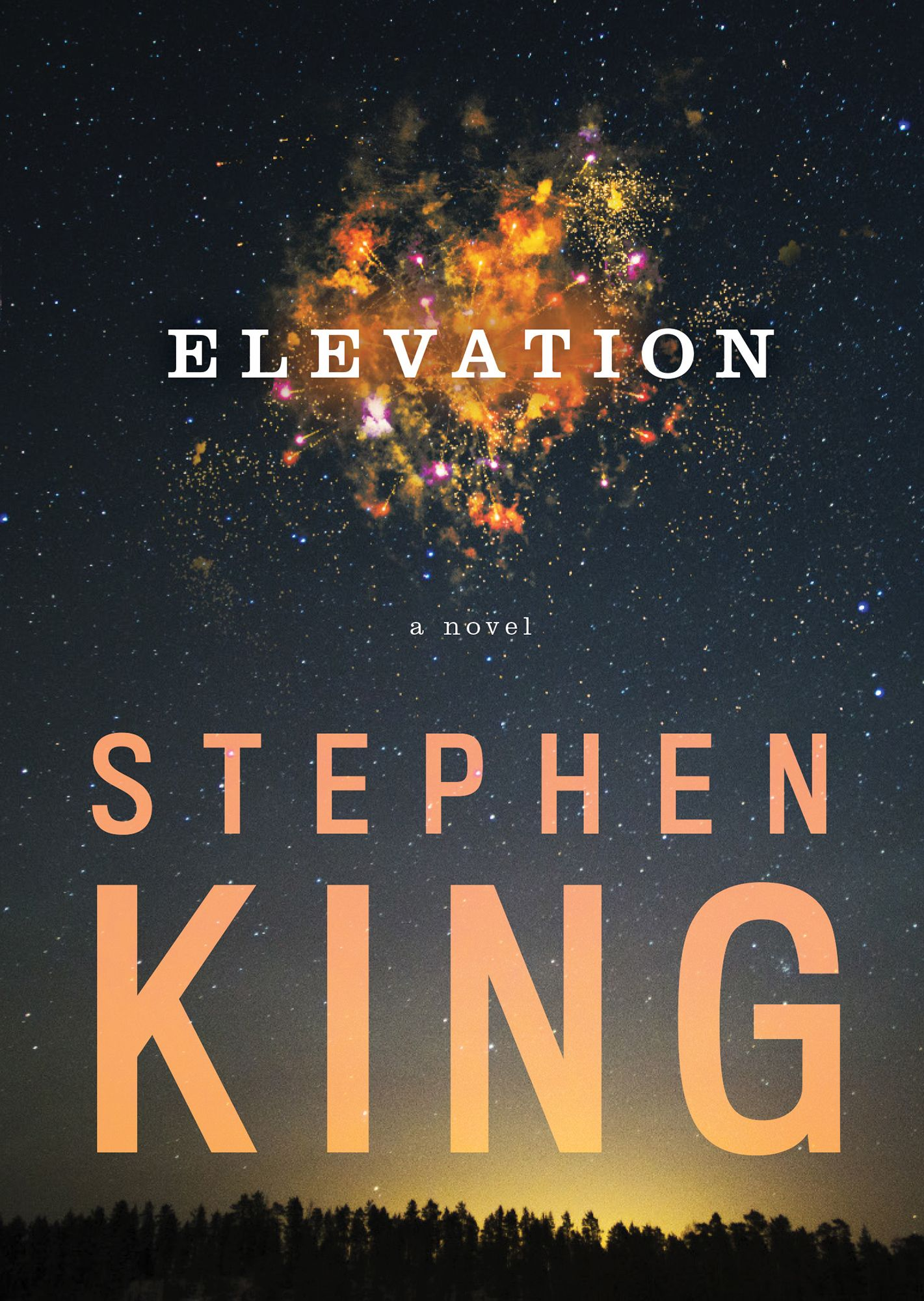 Elevation Stephen King Livres 2018 In 2019 Stephen