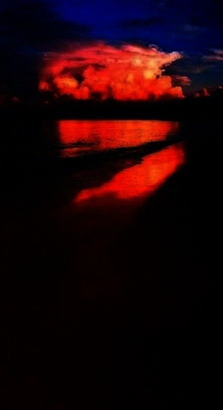 Best Photography Nature  Season Backdrops Summer Backdrops Beach Background Sunset X39-E  I love th
