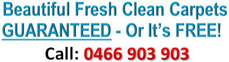 If You Are Looking For Commercial Carpet Cleaning Service At Sydney Dial Today 0466 903 9 How To Clean Carpet Cleaning Upholstery Commercial Carpet Cleaning