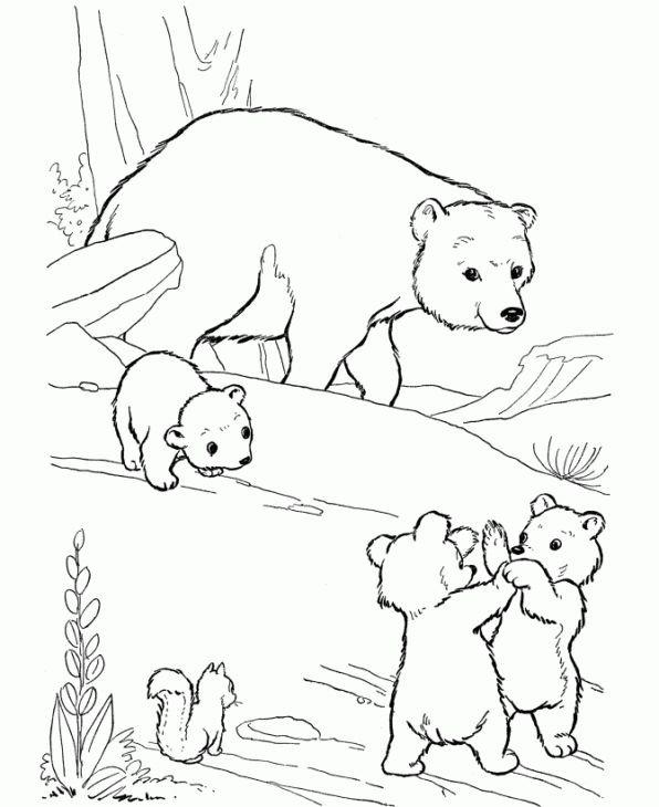 Online Polar Bear Coloring Page Printable For Kids Letscolorit Com Polar Bear Coloring Page Bear Coloring Pages Animal Coloring Pages