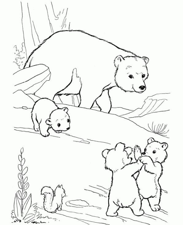 online polar bear coloring page printable for kids animal coloring pages pinterest polar. Black Bedroom Furniture Sets. Home Design Ideas