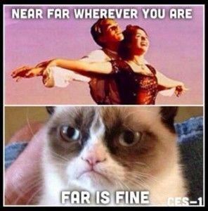 Grumpy Cat Titanic Copy Dump A Day Grumpy Cat Meme Grumpy Cat Grumpy Cat Humor