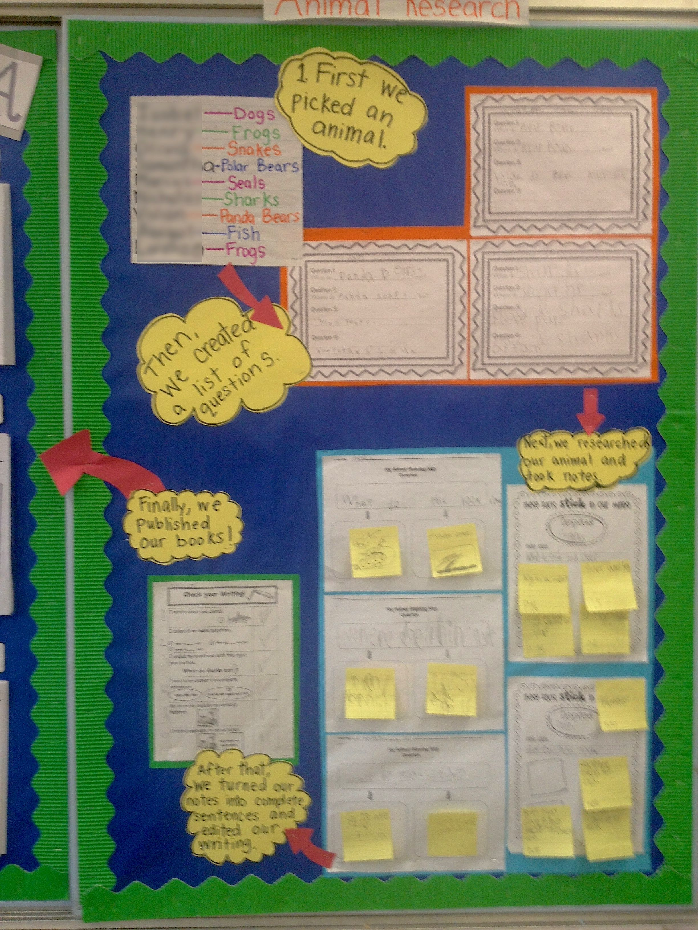 Display More Than Just The Steps Of The Writing Process