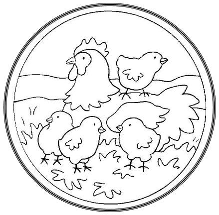 Imagen Relacionada Chicken And Ducks Coloring Pages To Print