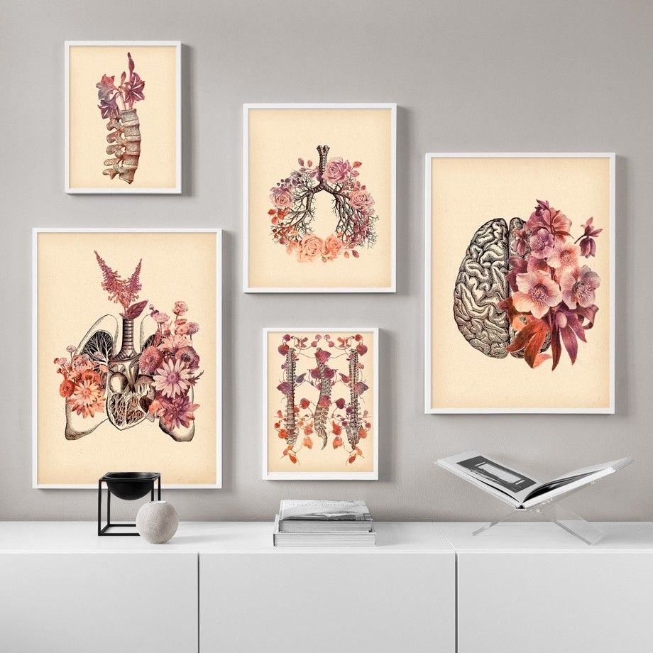 Brain Finger Skull Human Anatomy Poster Vintage Wall Art Canvas Painting Nordic Posters And Prints Wall Pictures For Living Room Wall Art Canvas Painting Vintage Wall Art Doctors Office Decor