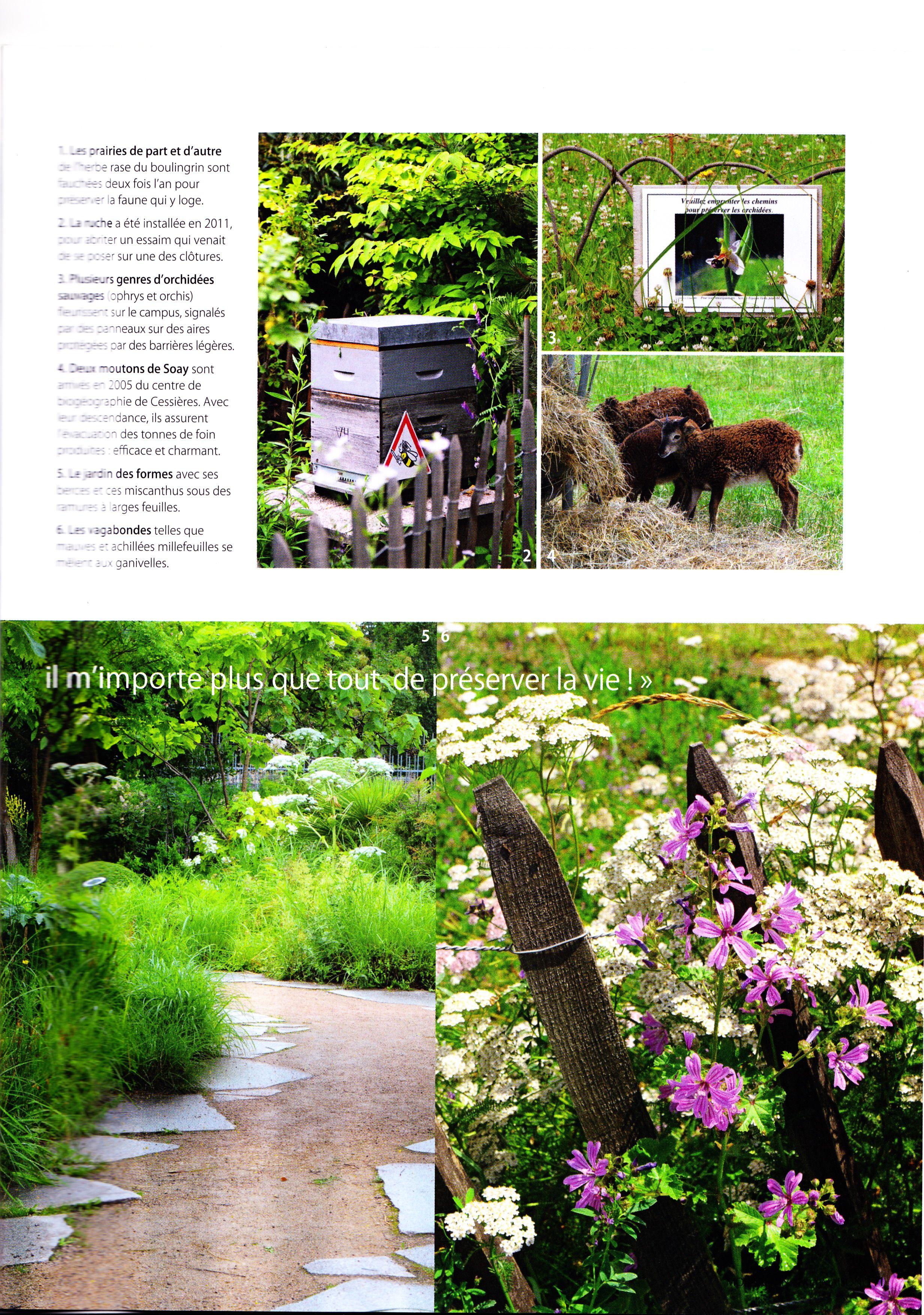 Mon Jardin En Avril le juste jardin, mon jardin ma maison, avril 2013 (page 4