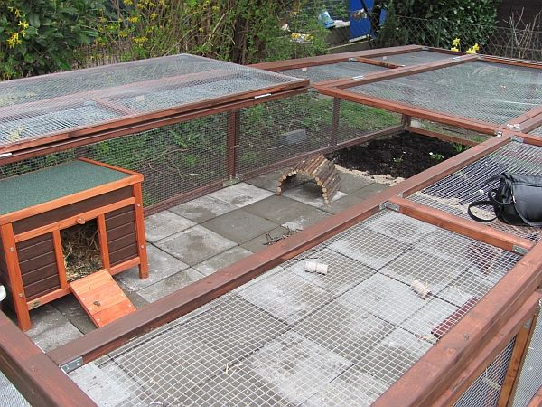 kaninchen info au engehege beispiele meerschweinchen k fig pinterest kaninchen. Black Bedroom Furniture Sets. Home Design Ideas