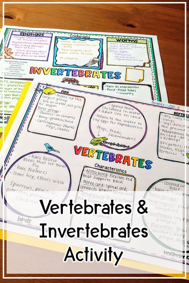 Vertebrates and Invertebrates Reading and Graphic