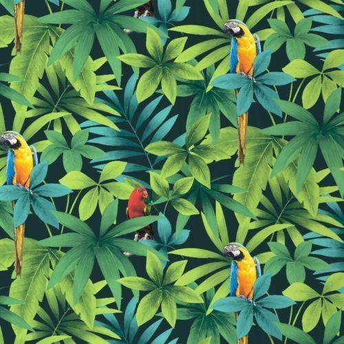 D tails sur perroquets papier peint for t de la jungle ara perroquets feuille - Papier peint tropical ...