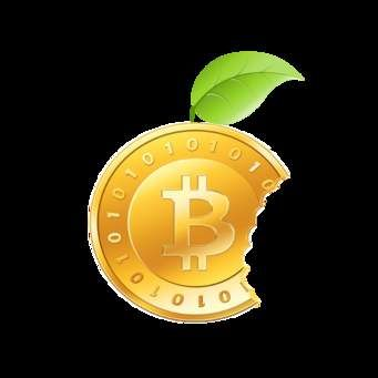 Cryptocurrency crypto currencies anonymous