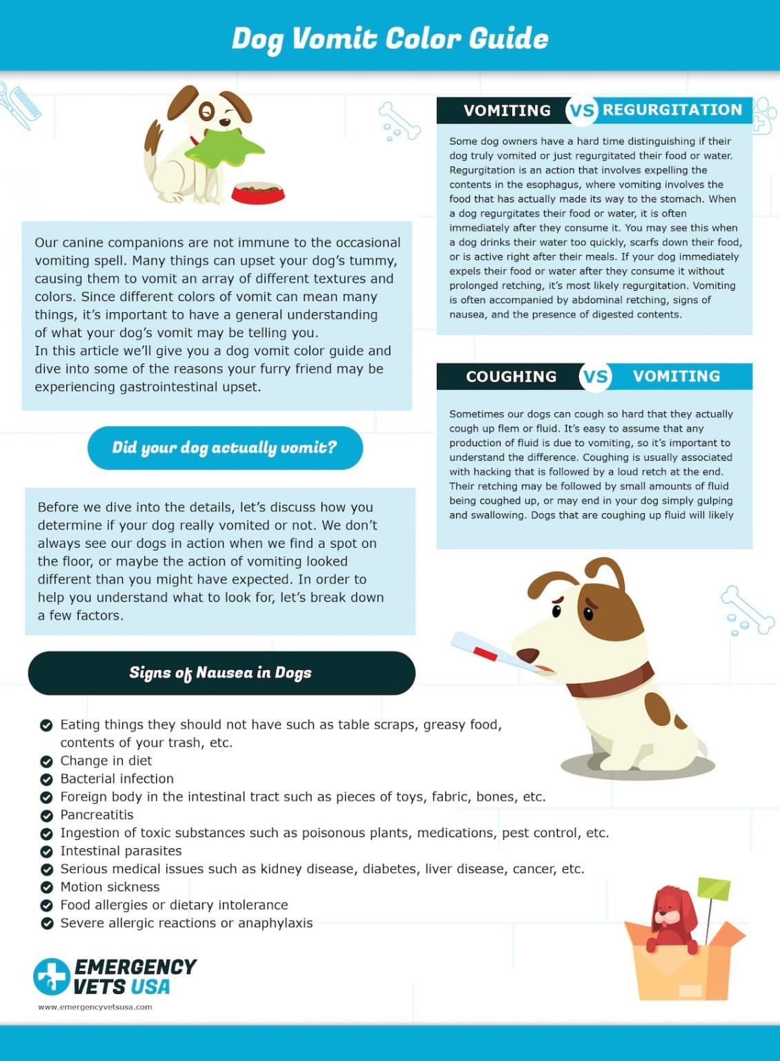 Dog Vomit Color Guide What Do The Different Colors Mean Dog Throwing Up Canine Companions Dogs