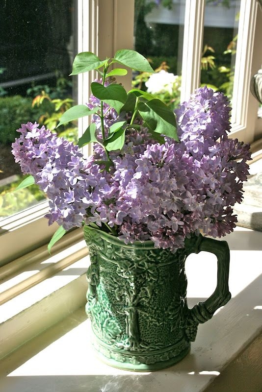 Lilacs remind me of my Mother!