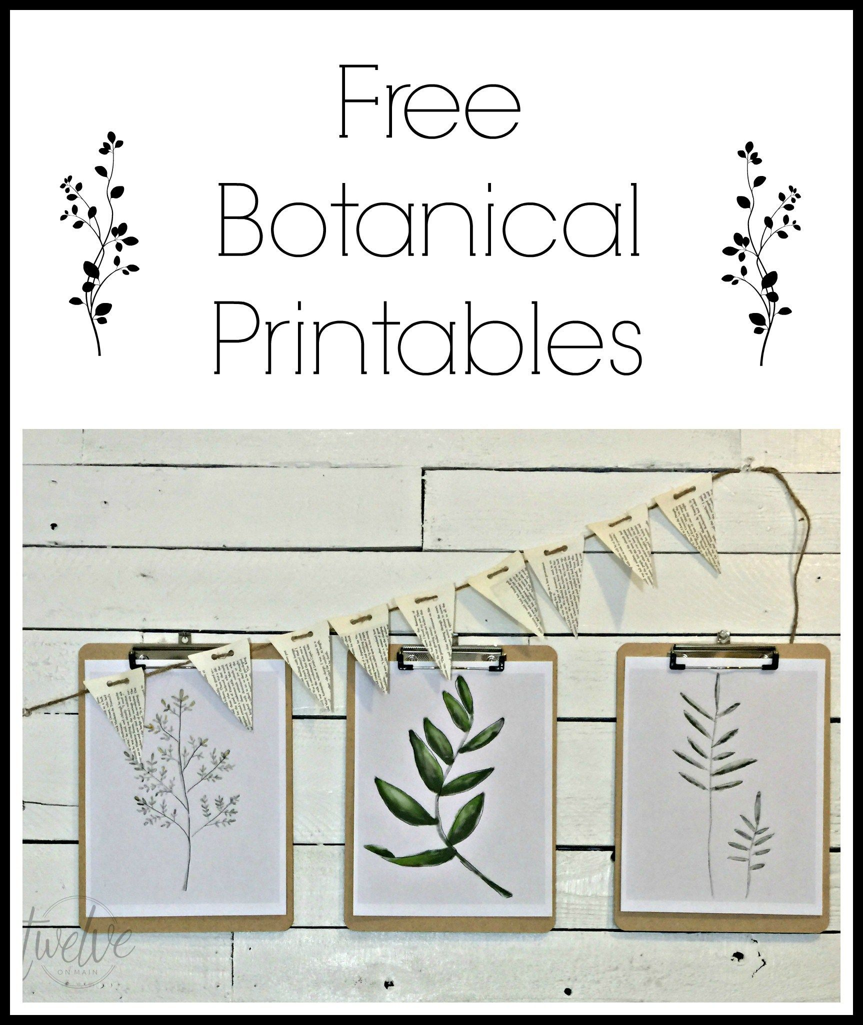 Free Watercolor Botanical Printables Free Printable Friday