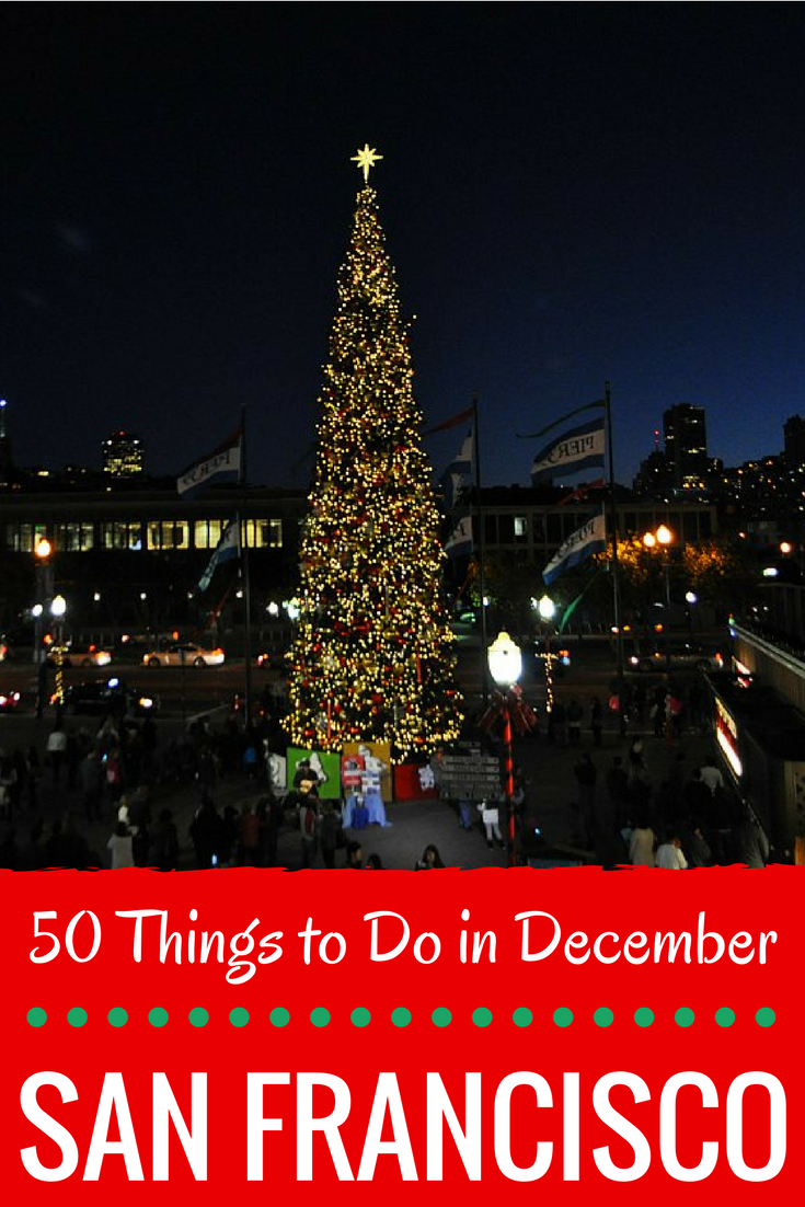 50+ Things to Do in San Francisco in December   Christmas in san francisco, San francisco day ...
