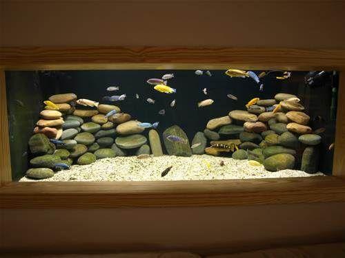 die besten 25 aquarium rund ideen auf pinterest aquarium kaufen aquarium mit st nder und. Black Bedroom Furniture Sets. Home Design Ideas