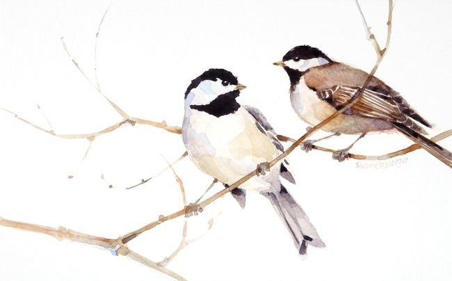 Chickadees by Sharon Morgio - Print available for purchase