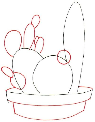 How to Draw a Cactus in 7 Steps   Art   Drawings, Cactus drawing ...