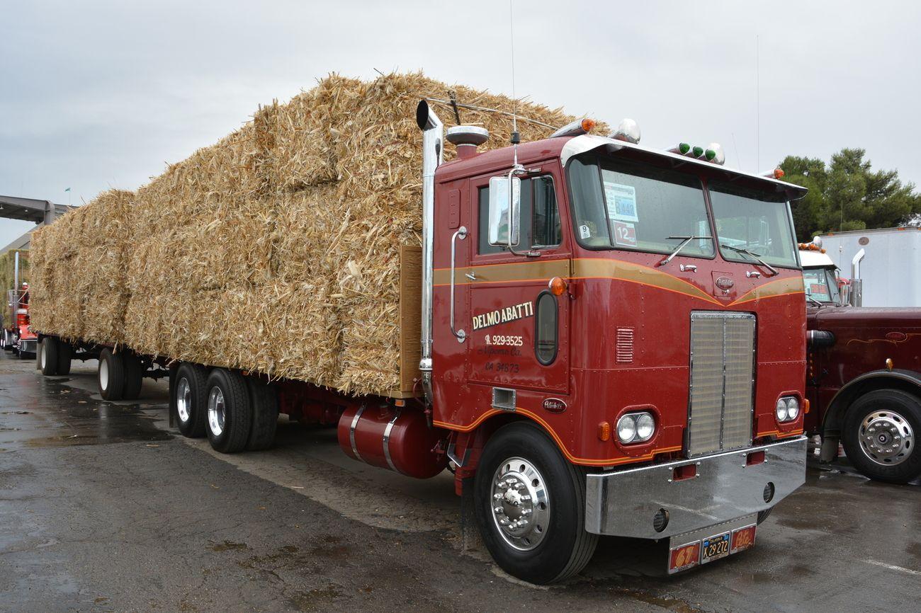 Park Art|My WordPress Blog_Wheel Lift Tow Truck For Sale Australia
