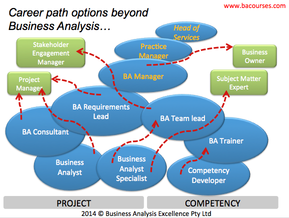 Business Analysis Career Progression Options - this picture ...