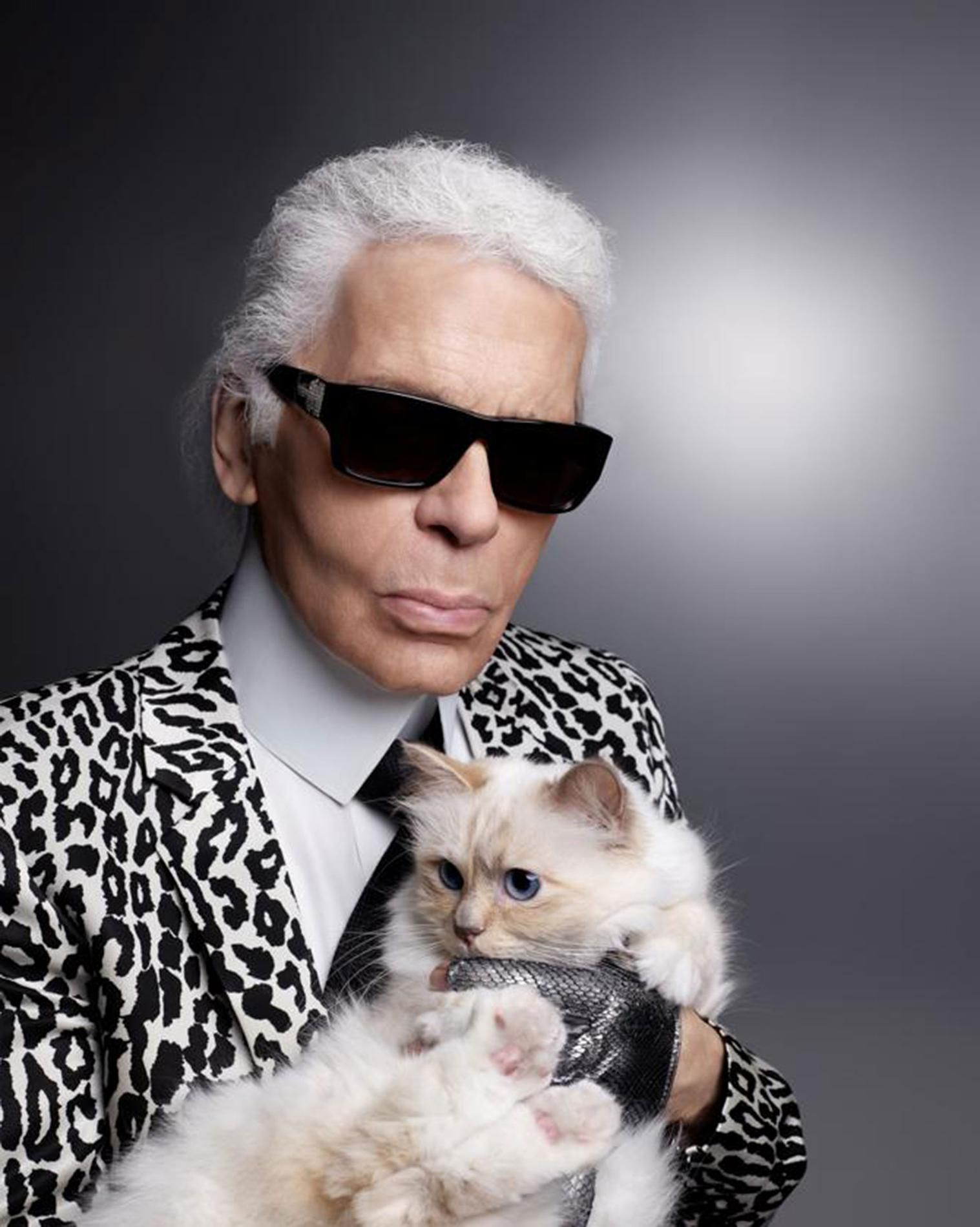 Karl Lagerfeld + Cat #love #cats #kittens #animals