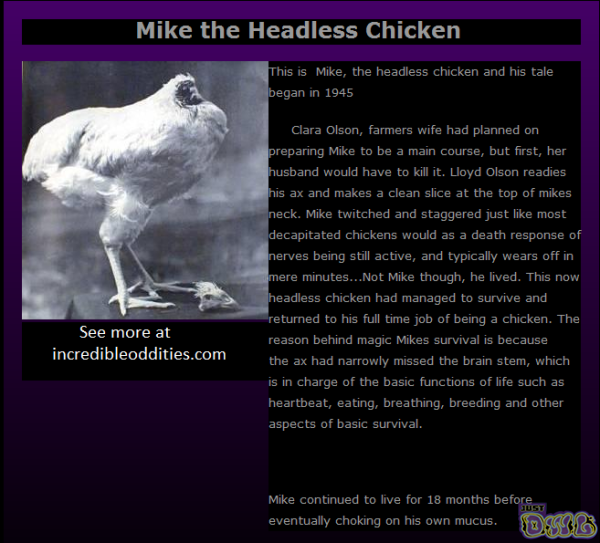 headless chicken monster - photo #31