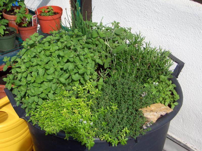 gegen platzmangel auf dem balkon oder der terrasse: ein regal für, Garten und erstellen