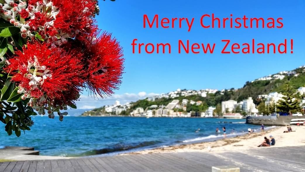 New Zealand Christmas Card New zealand travel guide