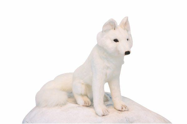 Hansa 6099 White Fox Sitting