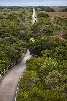 5 Outstanding Miami Bike Trails With Images Bike Trails