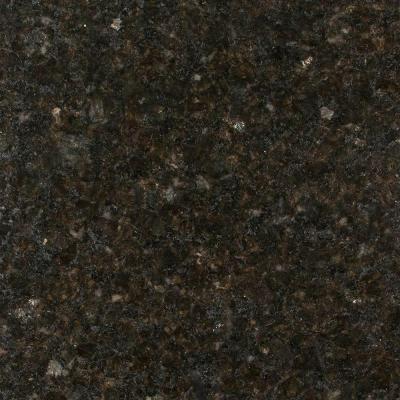 Stonemark 3 In X 3 In Granite Countertop Sample In Ubatuba Dt