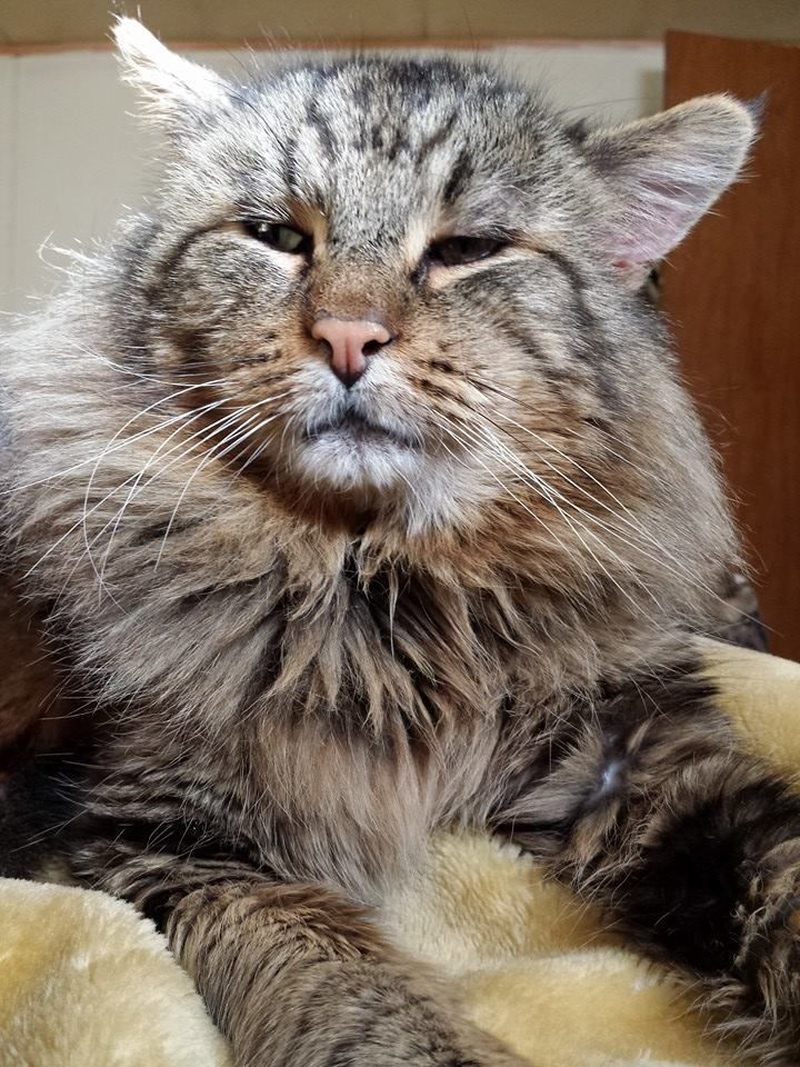 """My handsome guy Toot."" --- Teresa"