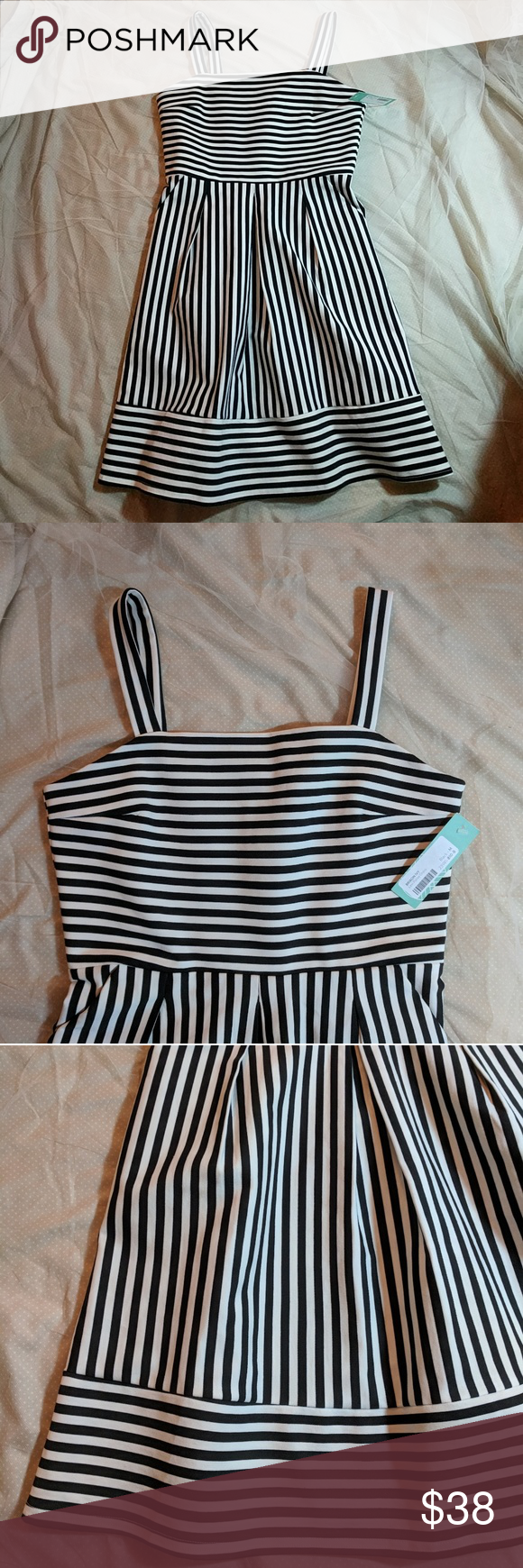 9739ed2c4aa NWT Brixon Ivy Ponte Black and White Striped Dress Brand new dress called  the Levi Ponte