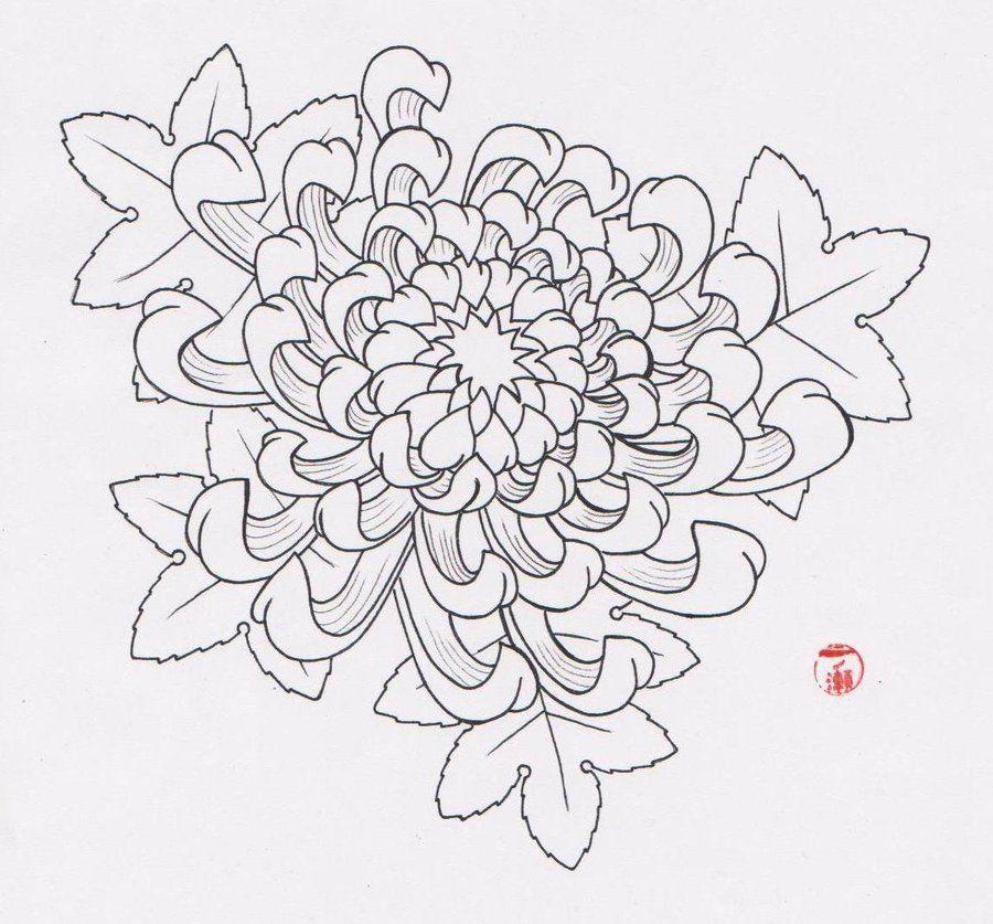 Chrysanthemum Flower Line Drawing : Flower tattoo flash chrysanthemum tattoos