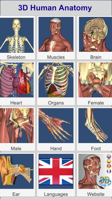 3D Anatomy Medical Education iPhone App ***** $3.99 -> FREE...: 3D ...