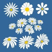 Daisy Flower SVG Cuttable Designs | Cricut / SVG / Flowers | Flower