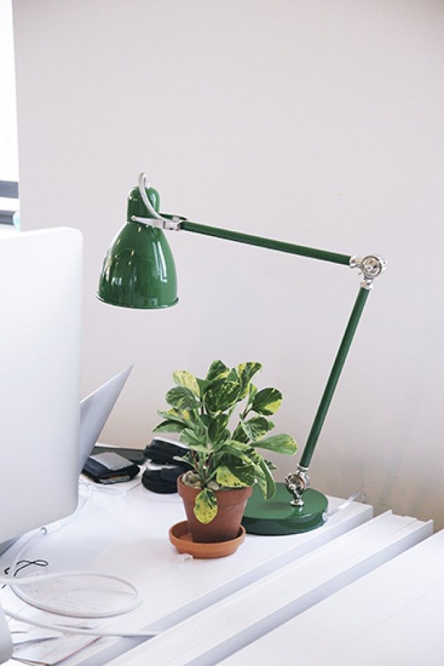 These Are The Best Office Plants For Boosting Productivity With Images Office Plants Best Office Plants Desk Plants