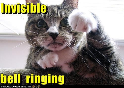 Image result for Funny pictures of bells
