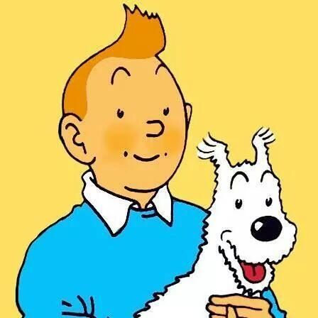 Tintin et milou tintin pinterest tintin - Image de tintin et milou ...