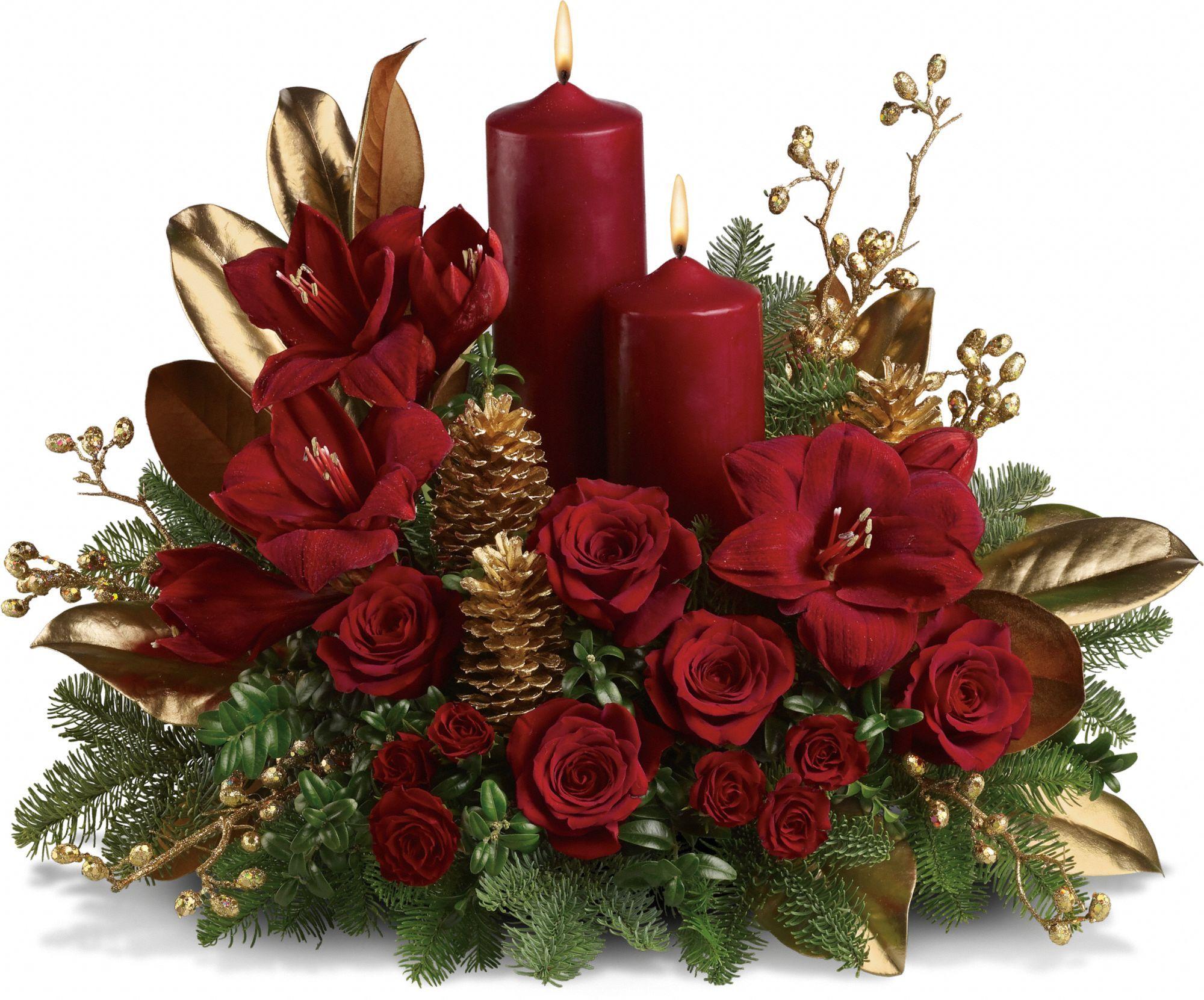 это фото с рождеством цветы древних