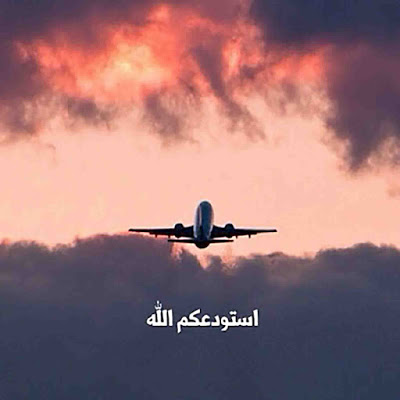 صور عن السفر استودعكم الله Passenger Jet Photo Passenger