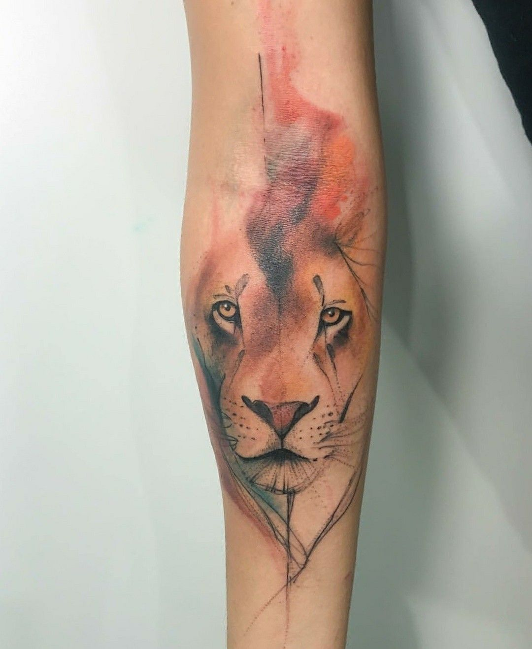 Epingle Par Xou Sur Idee Tatoo Tatouage Lion Tatoo