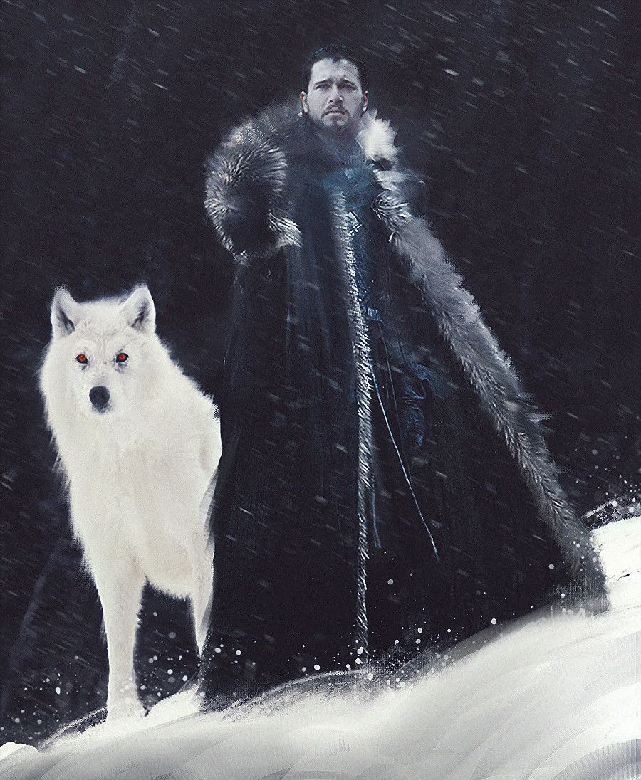 Artstation Jon Snow Aegon Targaryen Alongside His Albino