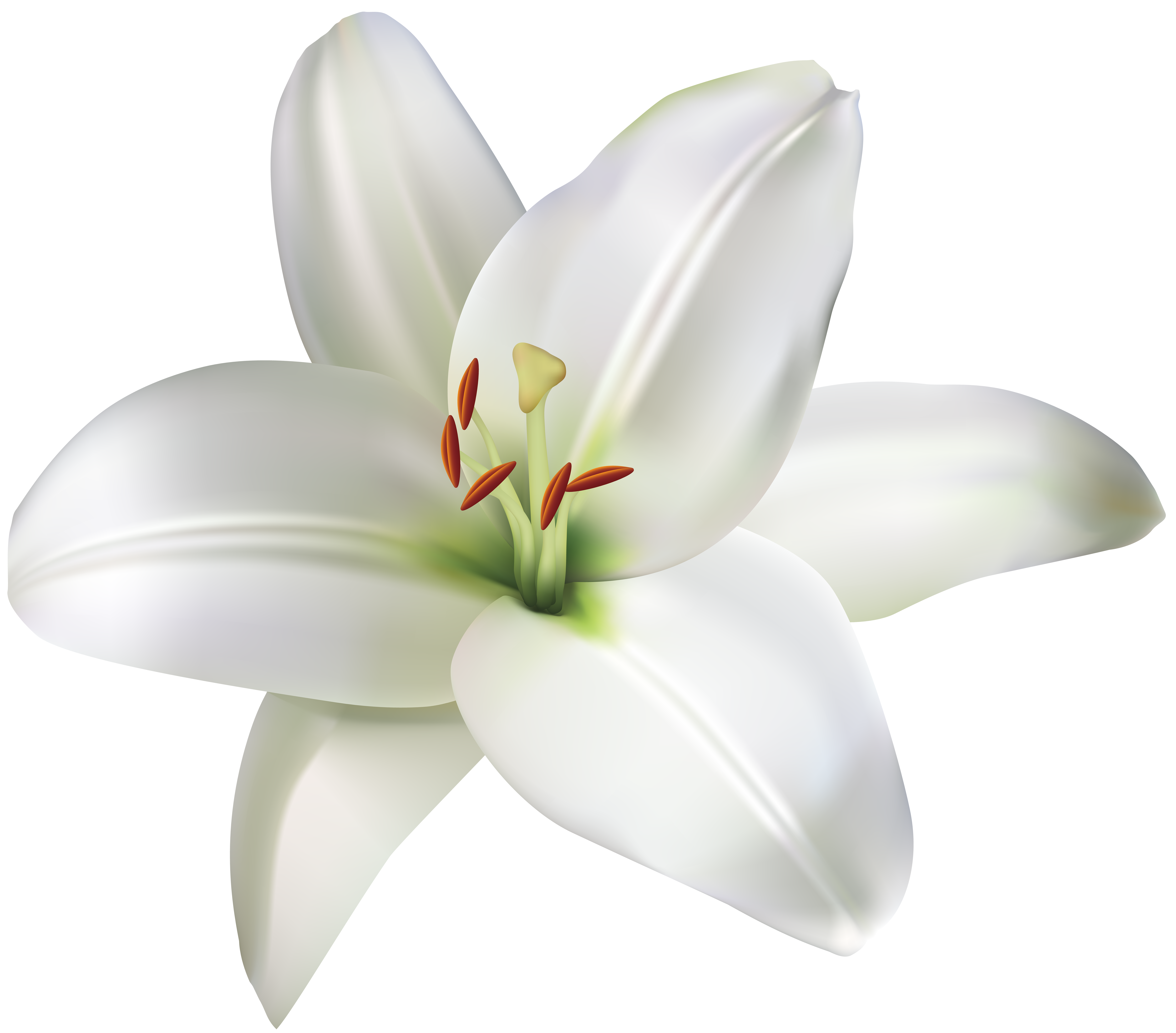 Lily Flower Png Clip Art Image Gallery Yopriceville High Quality Images And Transparent Png Free Clipart In 2021 Lily Flower Flower Clipart Art Images