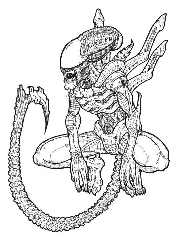 Alien and predator drawings - Google Search | Predator ...