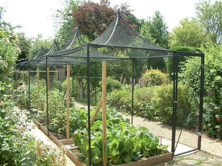 Merveilleux Image Result For Shade Cloth Over Vegetable Garden