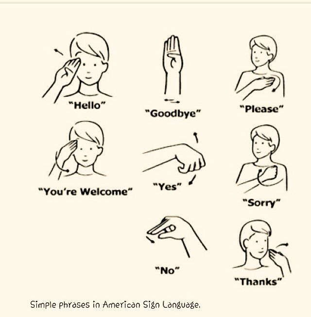 essay on american sign language American sign language (asl) is a complete, complex language that employs signs made by moving the hands combined with facial expressions and postures of the body.